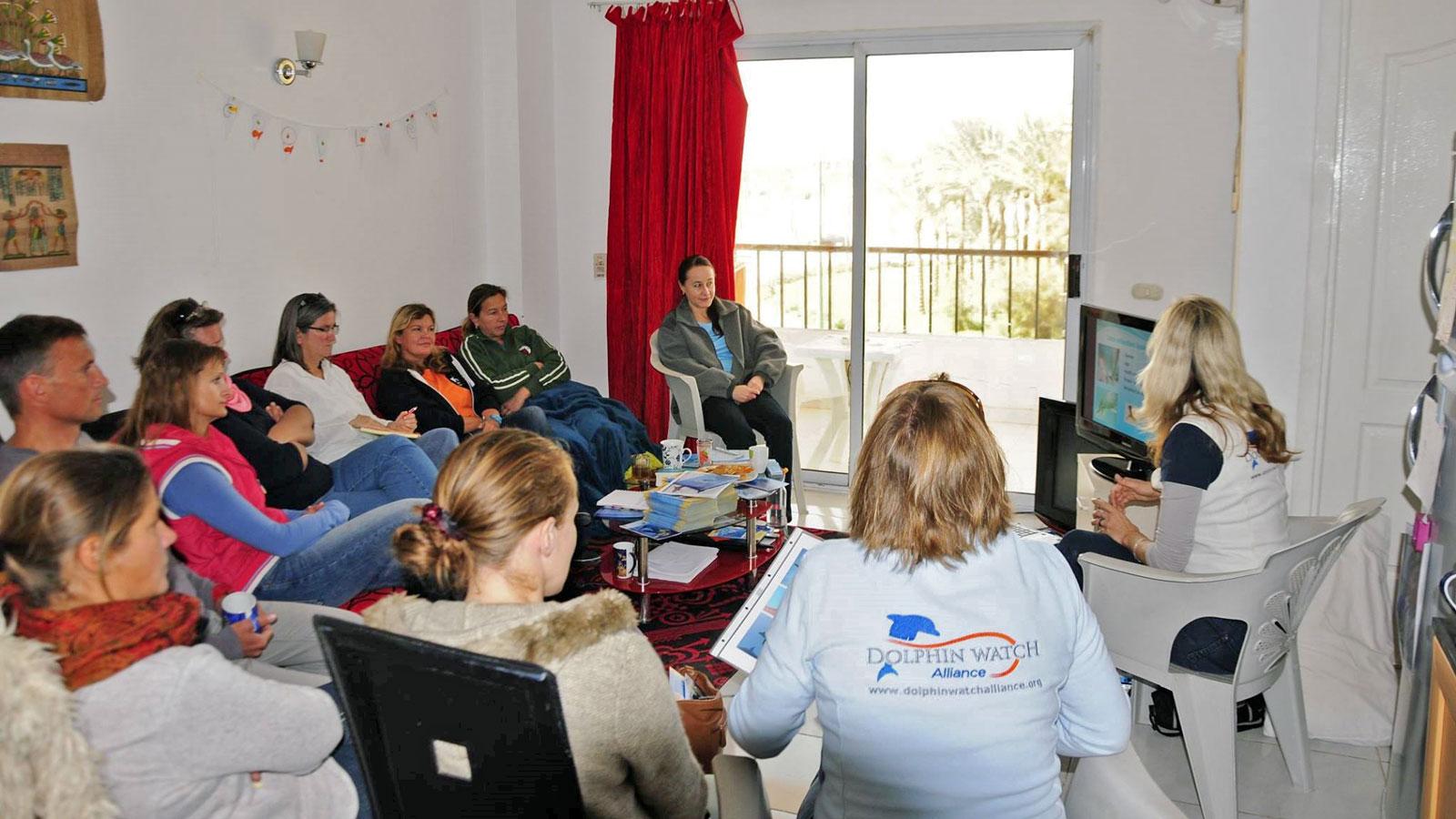 Team der Frogs Swim Academy informiert sich über den Schutz der Delfine